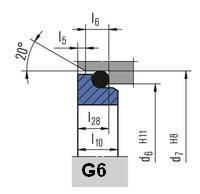 Неподвижное кольцо G6