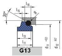 Неподвижное кольцо G13